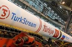Nga-Thổ Nhĩ Kỳ chuẩn bị khởi công dự án đường ống dẫn khí TurkStream