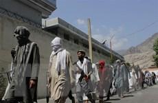 Afghanistan thông báo bắt giữ hàng trăm tay súng IS cùng thân nhân