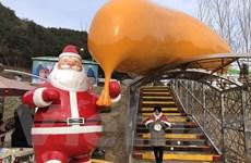 Hàn Quốc: Làng ông già Noel chính thức mở cửa đón khách