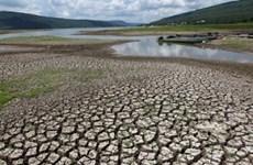 Khi biến đổi khí hậu không còn là câu chuyện của tương lai