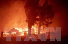 15 thảm họa thiên tai có mức thiệt hại từ 1 tỷ USD trở lên