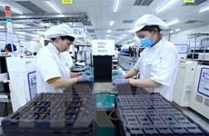 AFP: Kinh tế Việt Nam tăng trưởng ấn tượng trong năm 2019