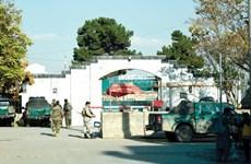 Pakistan nối lại dịch vụ lãnh sự tại thủ đô Kabul của Afghanistan