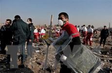 Máy bay Ukraine rơi tại Iran: Không phát hiện dấu hiệu bị bắn hạ