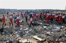 Việt Nam chia buồn về vụ máy bay của Ukraine gặp nạn ở Iran