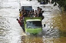 Người dân Indonesia khởi kiện Thống đốc Jakarta vì để xảy ra lũ lụt
