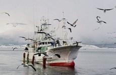 Nhật Bản yêu cầu Nga trả tự do cho tàu cá và thuyền viên bị bắt giữ