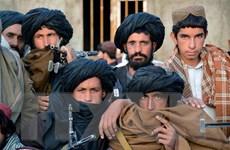 Pakistan: Lực lượng Taliban thể hiện thiện chí giảm bạo lực