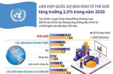 Liên hợp quốc dự báo về tăng trưởng kinh tế thế giới trong năm 2020
