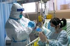 Việt Nam sẵn sàng cùng Trung Quốc đấu tranh chống lại dịch bệnh
