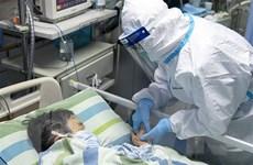 Nhật Bản xác nhận thêm các ca nhiễm mới virus corona