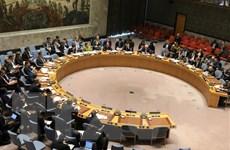 Việt Nam chủ trì phiên họp của HĐBA về các vấn đề tại Cyprus, Libya