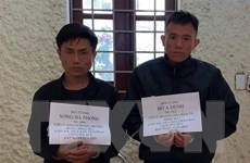 Sơn La: Bắt hai đối tượng vận chuyển 4.000 viên ma túy tổng hợp