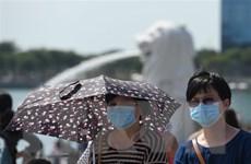 Singapore nâng cảnh báo lên mức Cam đối với dịch bệnh nCoV