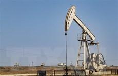 Giá dầu tăng khi lo ngại về tình trạng dư cung tiếp tục dịu đi