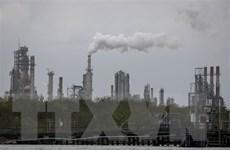Thế giới mất 8 tỷ USD mỗi ngày do ô nhiễm từ đốt nhiên liệu hóa thạch