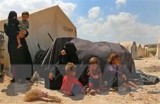 Thảm họa nhân đạo trong ''vũng lầy chính trị'' tại Syria