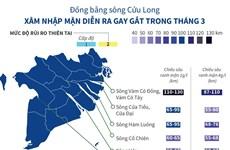 Xâm nhập mặn ở Đồng bằng sông Cửu Long diễn ra gay gắt trong tháng Ba