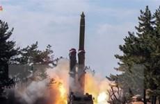 Hàn Quốc: Triều Tiên tìm cách thu hút chú ý bằng diễn tập vũ khí