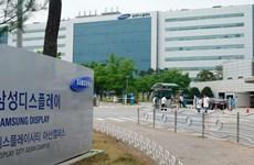 Bắc Ninh lên phương án giám sát y tế chặt chẽ 700 chuyên gia Hàn Quốc