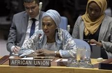 Vai trò ngày càng tăng của châu Phi tại Hội đồng Bảo an Liên hợp quốc