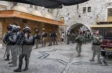 Quân đội Israel bắn chết người Palestine ném đá xe trên đường cao tốc