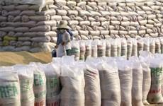Doanh nghiệp xuất khẩu gạo gặp khó vì trục trặc tờ khai hải quan