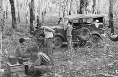 Hình ảnh phóng viên TTXVN 'lăn xả' trong Chiến dịch Hồ Chí Minh