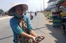 Trừng trị nghiêm khắc các đối tượng rải đinh trên đường