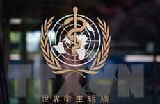 Cuộc chiến chống COVID-19: Bài kiểm tra năng lực của WHO