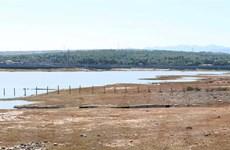 Nhiều diện tích canh tác có nguy cơ thiếu nước trong vụ Hè Thu, vụ Mùa