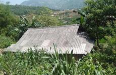 Khẩn trương điều tra vụ chồng giết vợ rồi treo cổ tự tử ở Hà Giang
