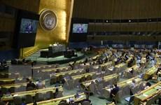 Bỏ phiếu trực tiếp bầu 5 thành viên không thường trực Hội đồng Bảo an