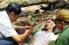 Quảng Bình: Băng rừng kịp thời cứu sống nạn nhân bị ong đốt