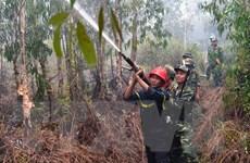 400 lượt người tham gia chữa cháy rừng tràm phòng hộ ở Hòn Đất