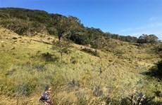 Bảo tồn và phát huy giá trị đa dạng sinh học Vườn quốc gia Núi Chúa