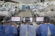 Nam Mỹ trở thành tâm dịch COVID-19 mới, châu Phi có tỷ lệ tử vong thấp