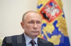 Nga khẳng định vai trò hợp tác quốc tế chống chủ nghĩa cực đoan