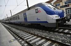 Thẩm định Báo cáo tiền khả thi Dự án đường sắt tốc độ cao Bắc-Nam
