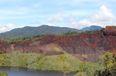 Kon Tum: Điều tra vụ cháy hơn 12ha rừng thông ở huyện Kon Plông