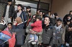 Số người xin tị nạn tại châu Âu thấp nhất trong một thập kỷ