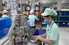 Doanh nghiệp cải tiến chất lượng, tái khởi động kinh doanh