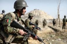Afghanistan bắt giữ một thủ lĩnh quan trọng của tổ chức IS