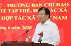 PTT Trịnh Đình Dũng: Hợp tác xã phải lấy hiệu quả kinh tế làm thước đo