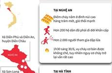 [Infographics] Toàn cảnh vụ cháy rừng ở Nghệ An và Hà Tĩnh