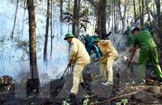 Khám nghiệm hiện trường, làm rõ nguyên nhân gây cháy rừng tại Nghệ An