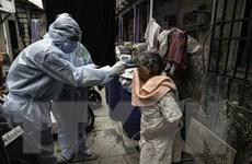 Ấn Độ ghi nhận số ca nhiễm COVID-19 cao nhất trong ngày