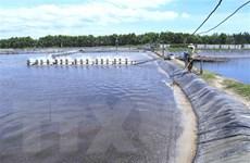 Tiền Giang mở rộng diện tích thủy sản ở các vùng sinh thái