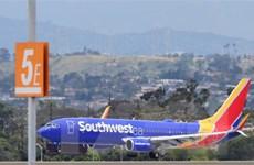Hàng không Mỹ xoay sở vượt qua khủng hoảng dịch bệnh