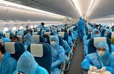 Đưa gần 280 công dân Việt Nam từ Nga và Belarus về nước